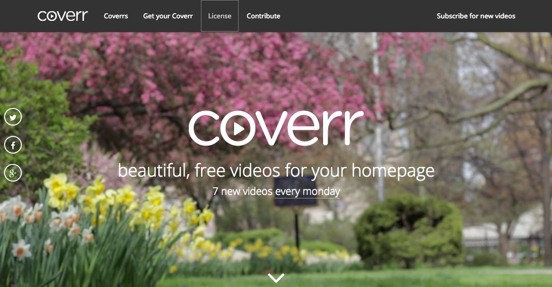 coverr free stock footage
